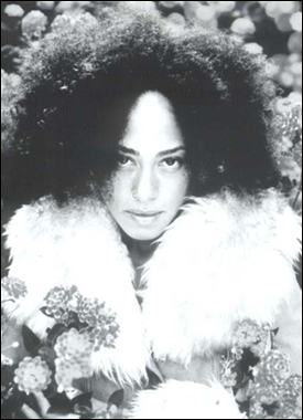 the dailies cree summer